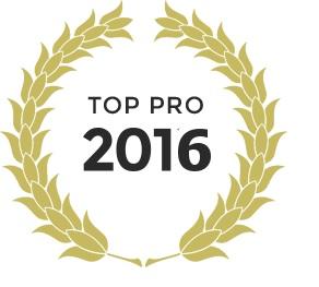 Logo Pro 2016 pour Eli2p Sécurité Incendie